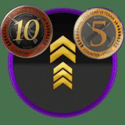 CSGO 10 & 5 year veteran coin