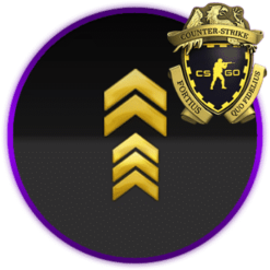 Private Rank 2 Loyalty Badge
